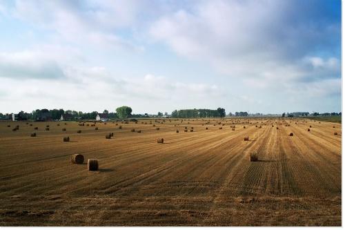 l'agriculture est un moyen